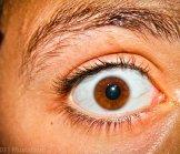 Talk : L'œil et le sourcil