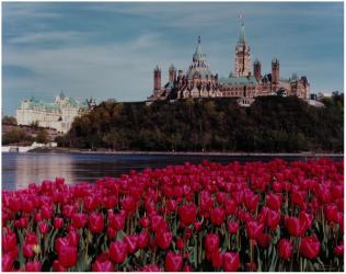 Excursion à la ville d'Ottawa