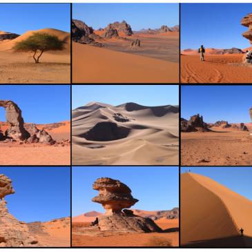 Exposition sur le Sahara Algérien